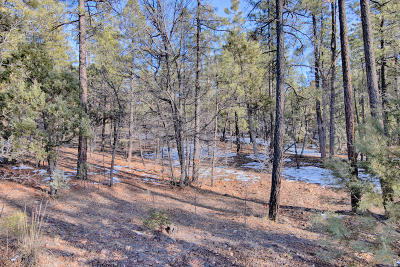 Pinetop Residential Lots & Land For Sale: Lot 67 Pinewood Lane