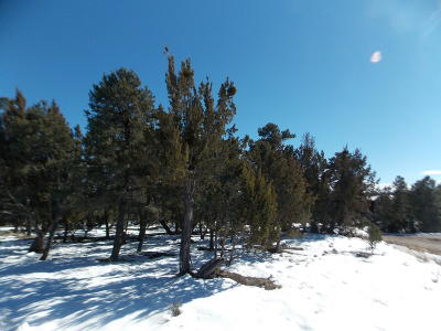 Overgaard AZ Residential Lots & Land For Sale: $67,900