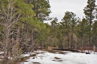 Lakeside Residential Lots & Land For Sale: Tbd Show Low Lake Road