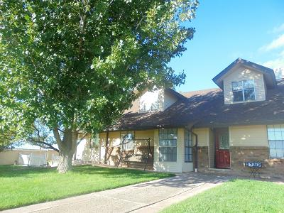 Snowflake Single Family Home For Sale: 3690 Hwy 77