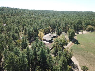 Pinetop Residential Lots & Land For Sale: 931 E Woodland Lake Road