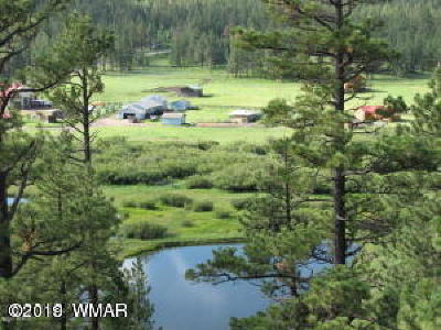 Greer Residential Lots & Land For Sale: 66 N 1072 County Road