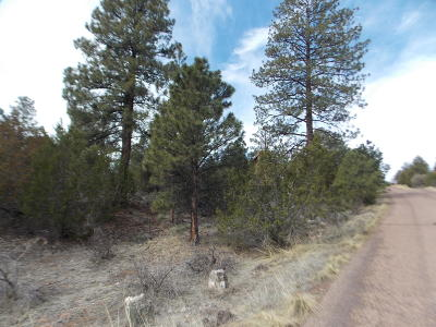 Overgaard AZ Residential Lots & Land For Sale: $29,900