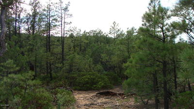 Show Low Residential Lots & Land For Sale: 260 Clark Road