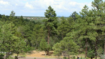 Show Low Residential Lots & Land For Sale: 43 43rd Avenue