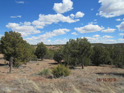 Navajo County Residential Lots & Land For Sale: 2198 Pulp Mill Road