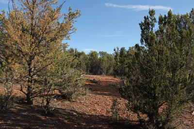 Navajo County Residential Lots & Land For Sale: 5081 Alyssa Road