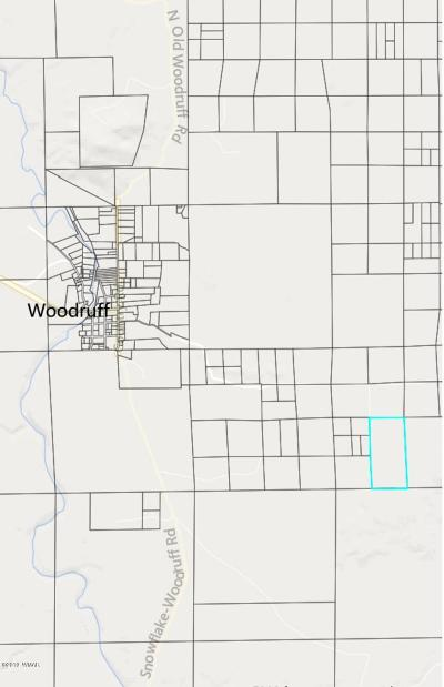 Navajo County Residential Lots & Land For Sale: Tbd Pottsville Road