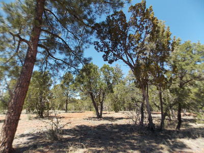 Overgaard AZ Residential Lots & Land For Sale: $89,900