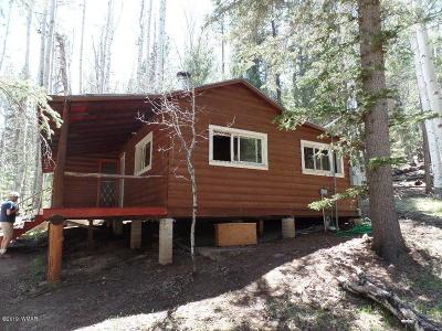 Greer Single Family Home For Sale: 4 Cr 1006