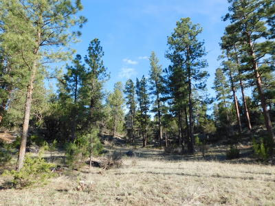 Heber AZ Residential Lots & Land For Sale: $188,900