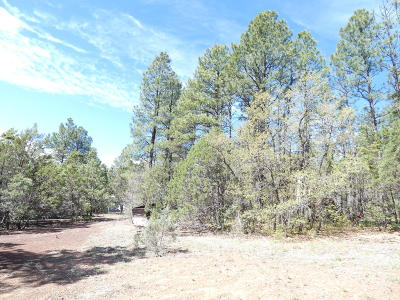 Lakeside Residential Lots & Land For Sale: 2740 Navajo Way