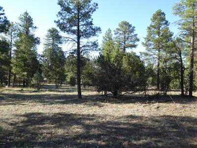 Overgaard Residential Lots & Land For Sale: 2096 Forest Park Drive