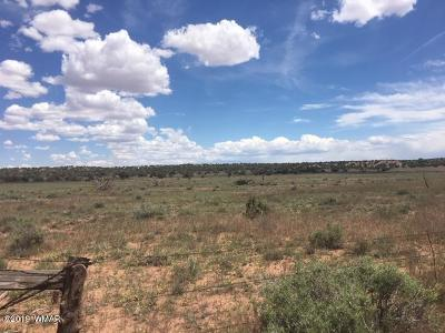 Snowflake Residential Lots & Land For Sale: 9757 Butler Trail