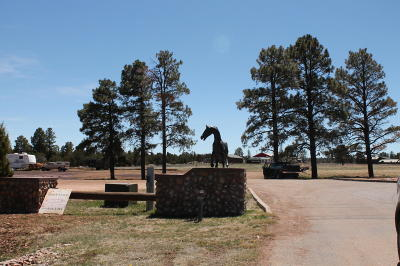 Overgaard Residential Lots & Land For Sale: Lot 996f Bison Ranch
