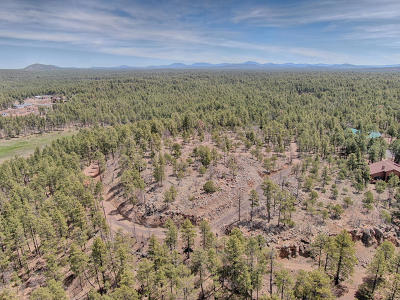 Pinetop Residential Lots & Land For Sale: 7.47 Acres Off Of Pine Lake Road