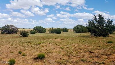 Snowflake Residential Lots & Land For Sale: 3846 Freeman Hollow