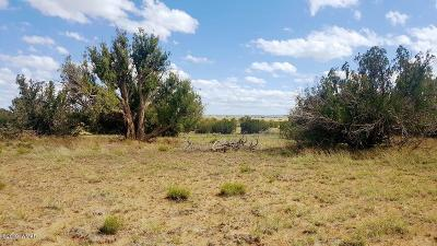 Snowflake Residential Lots & Land For Sale: 3834 Freeman Hollow