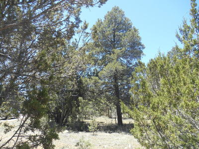 Overgaard Residential Lots & Land For Sale: 2862 Lodgepole Road