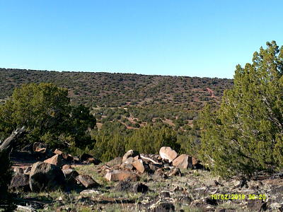 White Mountain Lake Residential Lots & Land For Sale: Tbd Lot D Wagon Ln. & Dry Gultch