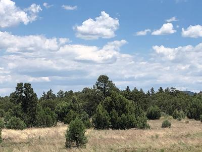 Show Low Residential Lots & Land For Sale: 3970 Industrail Loop