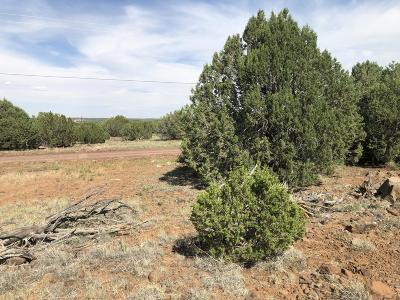 Show Low Residential Lots & Land For Sale: 8135 Well Road