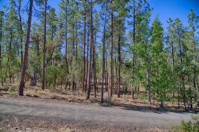 Navajo County Residential Lots & Land For Sale: 2838 S Pinewood Lane