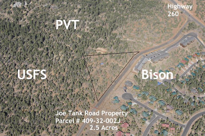 Show Low Residential Lots & Land For Sale: Tbd Joe Tank Road