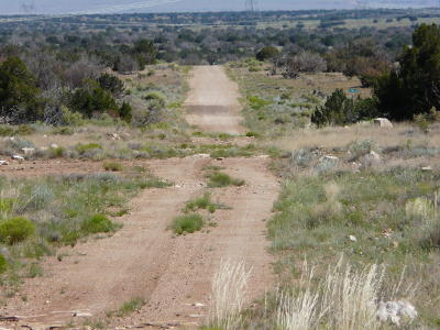 Heber Residential Lots & Land For Sale: Lot 244 Ccr Unit 2 #2