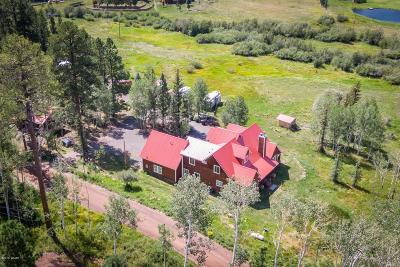 Greer Single Family Home For Sale: 63 Cr 1121