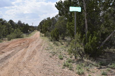 Overgaard AZ Residential Lots & Land For Sale: $75,000