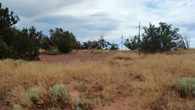 Snowflake Residential Lots & Land For Sale: Tbd Porter Street