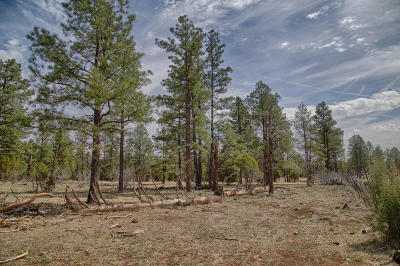Lakeside Residential Lots & Land For Sale: Tbd W Coyote Drive