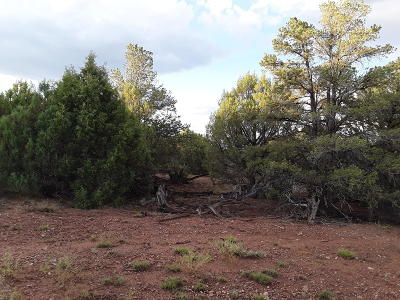 Clay Springs Residential Lots & Land For Sale: 5064 Twilight Lane