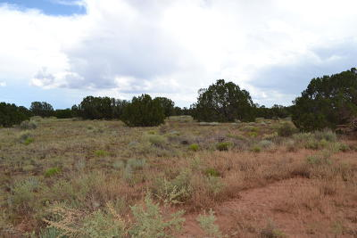 Snowflake Residential Lots & Land For Sale: 3795 Bum Heel Ranch Rd Lot 2