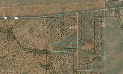 Snowflake Residential Lots & Land For Sale: Tbd Bum Heel Ranch Road