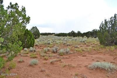 Snowflake Residential Lots & Land For Sale: 3734 Bum Heel Ranch Rd Lot A