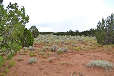 Snowflake Residential Lots & Land For Sale: 3734 Bum Heel Ranch Rd Lots B, C, D