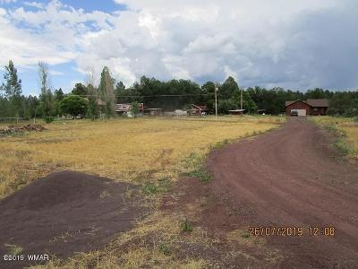 Lakeside Residential Lots & Land For Sale: Tbd Graham Drive