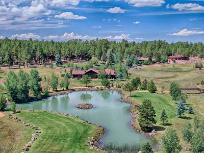 Pinetop Single Family Home For Sale: 9556 Sierra Springs Lane