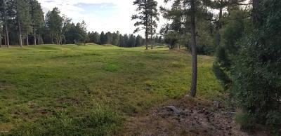 Navajo County Residential Lots & Land For Sale: 4201 W Wild Iris Lane #Lot 245