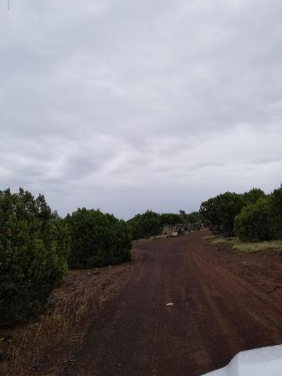 Navajo County Residential Lots & Land For Sale: 1528 Falcon Road