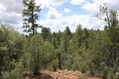 Navajo County Residential Lots & Land For Sale: 6253 Elk Haven Drive