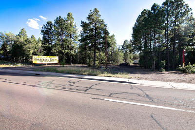 Lakeside Residential Lots & Land For Sale: 3515 State Route 260