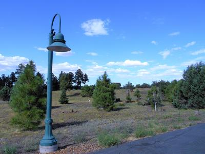 Overgaard Residential Lots & Land For Sale: 2254 Big Bear Circle Circle