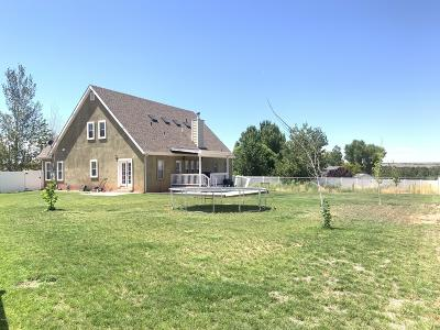 Snowflake Single Family Home For Sale: 1638 W Quarter Horse Drive