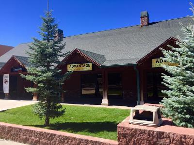 Pinetop Commercial For Sale: 1555 W White Mountain Boulevard