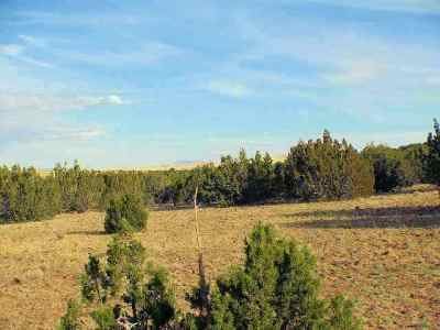 Heber Residential Lots & Land For Sale: Sec. 8 T14n R17e:s2 Nw4 Nw4
