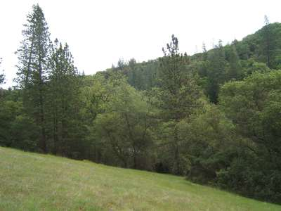 Jackson Residential Lots & Land For Sale: Highway 88