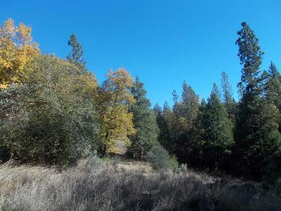 Wilseyville CA Residential Lots & Land Sold: $85,000